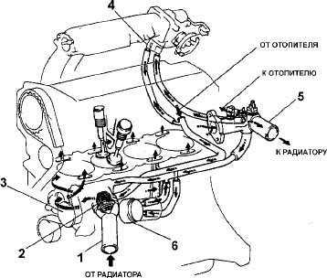 Схема системы охлаждения двигателя двигателя 3s фото 807